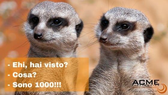 - Ehi, hai visto--Cosa--Sono 1000!!!